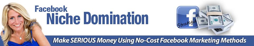 Facebook_Niche_Domination__banner_big__00_copy